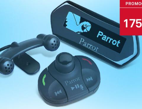 parrot_ptomocao